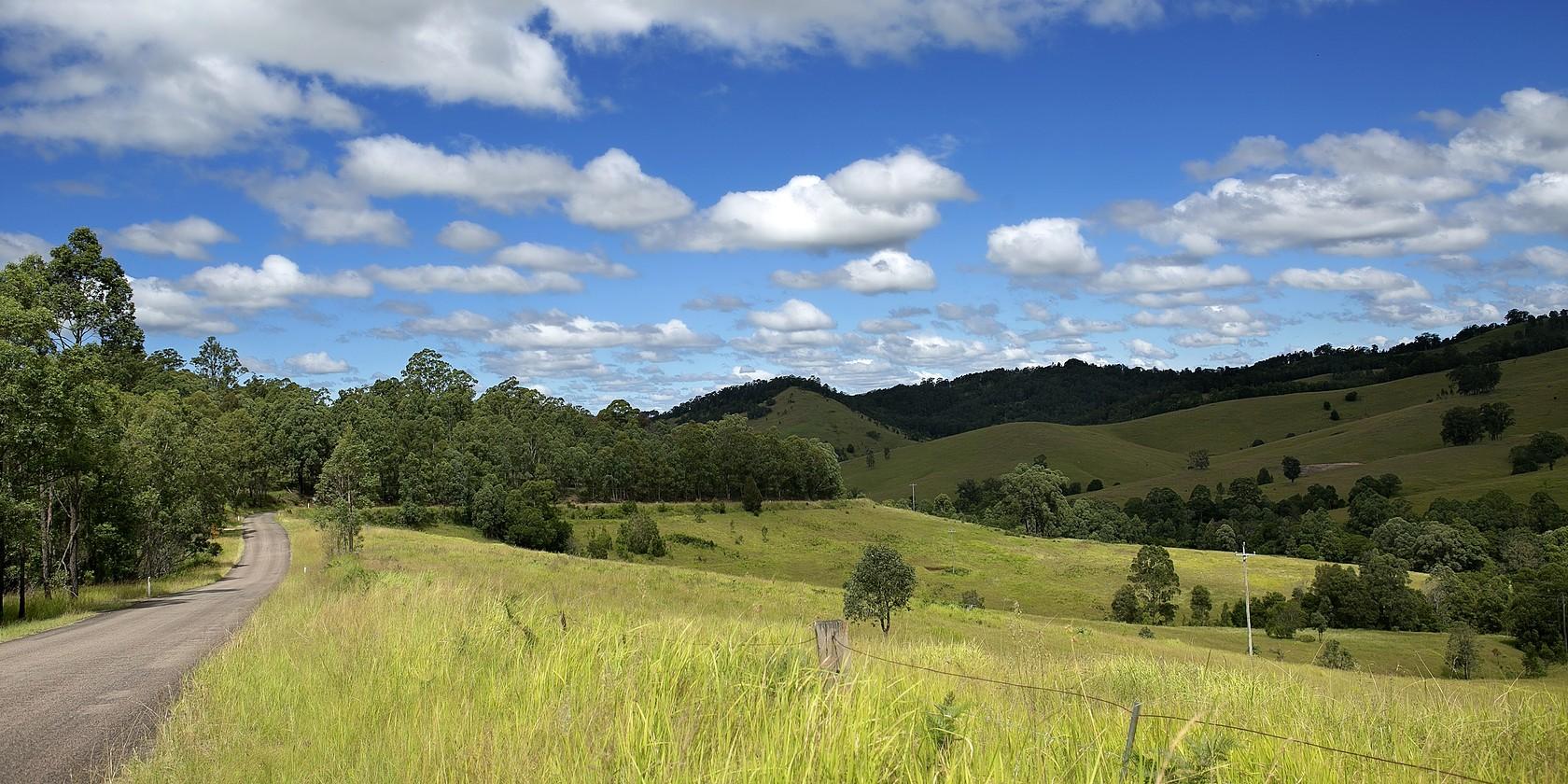 Dungog landscape